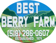 Best Berry Farm, East Greenbush NY