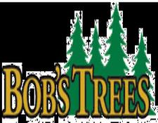 Bob's Trees, Galway NY