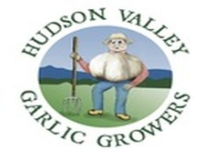 Hudson Valley Garlic Growers, Germantown NY