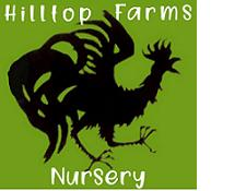 Hilltop Farms Nursery, Averill Park NY