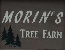 Morin's Tree Farm, Buskirk NY