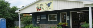 Berry Patch
