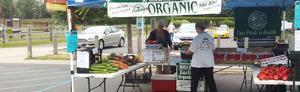 9J Organic Farm