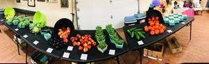 Tri-County Farmers' Market