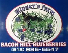 Winney's Blueberry Farm, Schuylerville NY