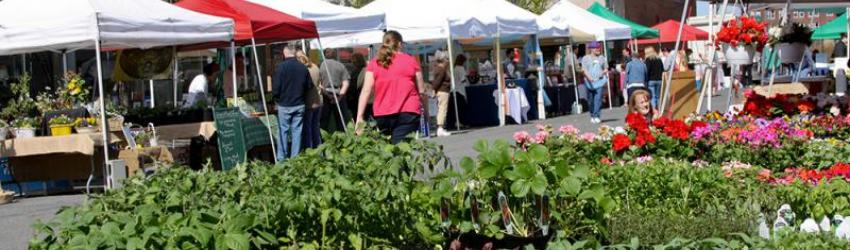 Schenectady Greenmarket moves outside City Hall April 11