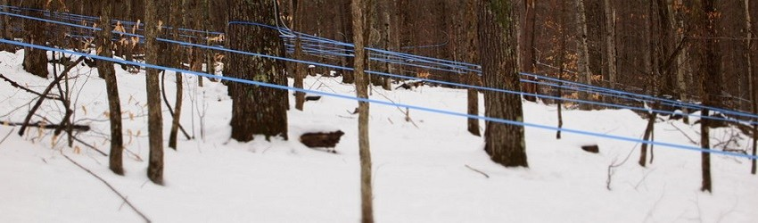 Getting Ready for Sugaring Season